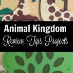 Animal Kingdom Cricut Cartridge Review