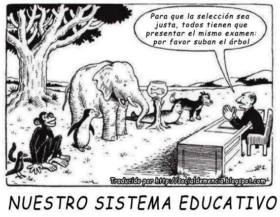 sistema-educativo