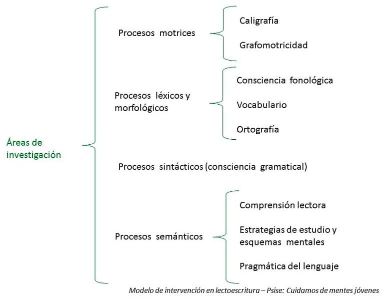 Esquema de las áreas de intervención en lectoescritura de psise