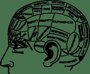 brain-2029363_1280
