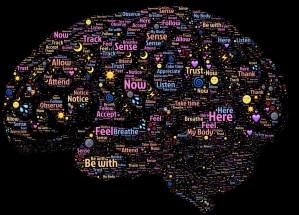 Imagen de corteza cerebral con localización de funciones cerebrales como sentidos, confianza, cuerpo etc.