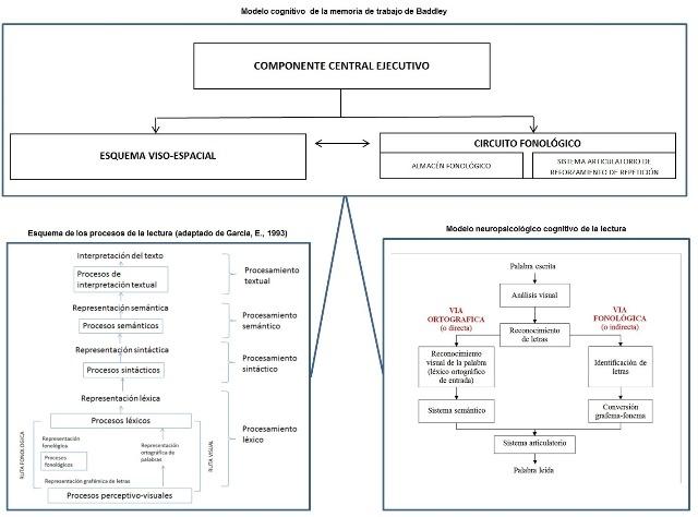 Esquema del modelo de la memoria de trabajo según Baddley