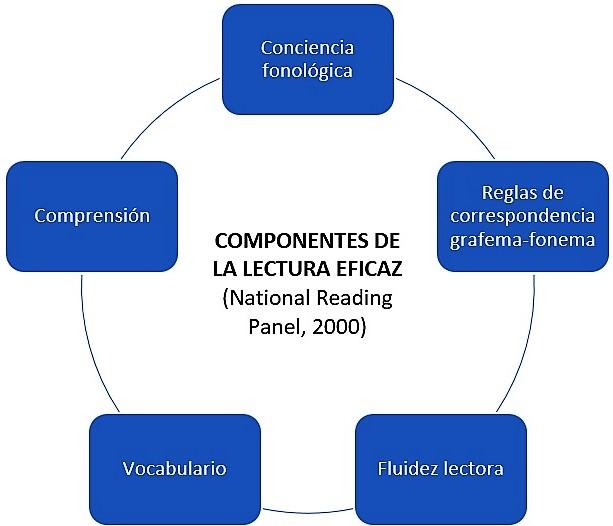 Componentes esenciales de la lectura eficaz (National Reading Panel, 2000): Conciencia fonológica, Reglas de correspondencia grafema-fonema, Fluidez lectora, Vocabulario, Comprensión.
