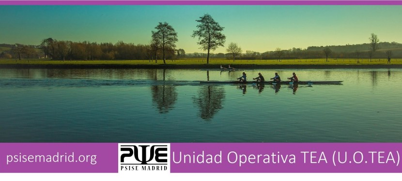 Unidad Operativa TEA (U.O.TEA)