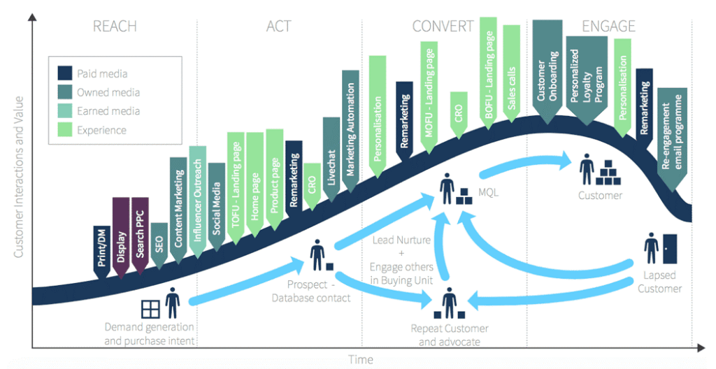 lifecycle marketing consulting