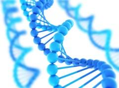 DNA_20212745