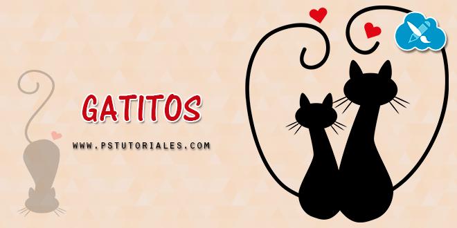 6 Gatitos en PNG