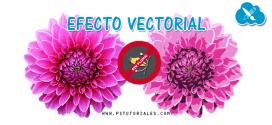 Efecto vectorial en imagen con Photoshop