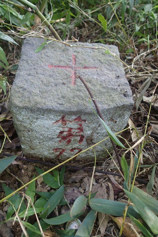 20170127葫蘆洲山-內湖復育公園   一個平凡的人