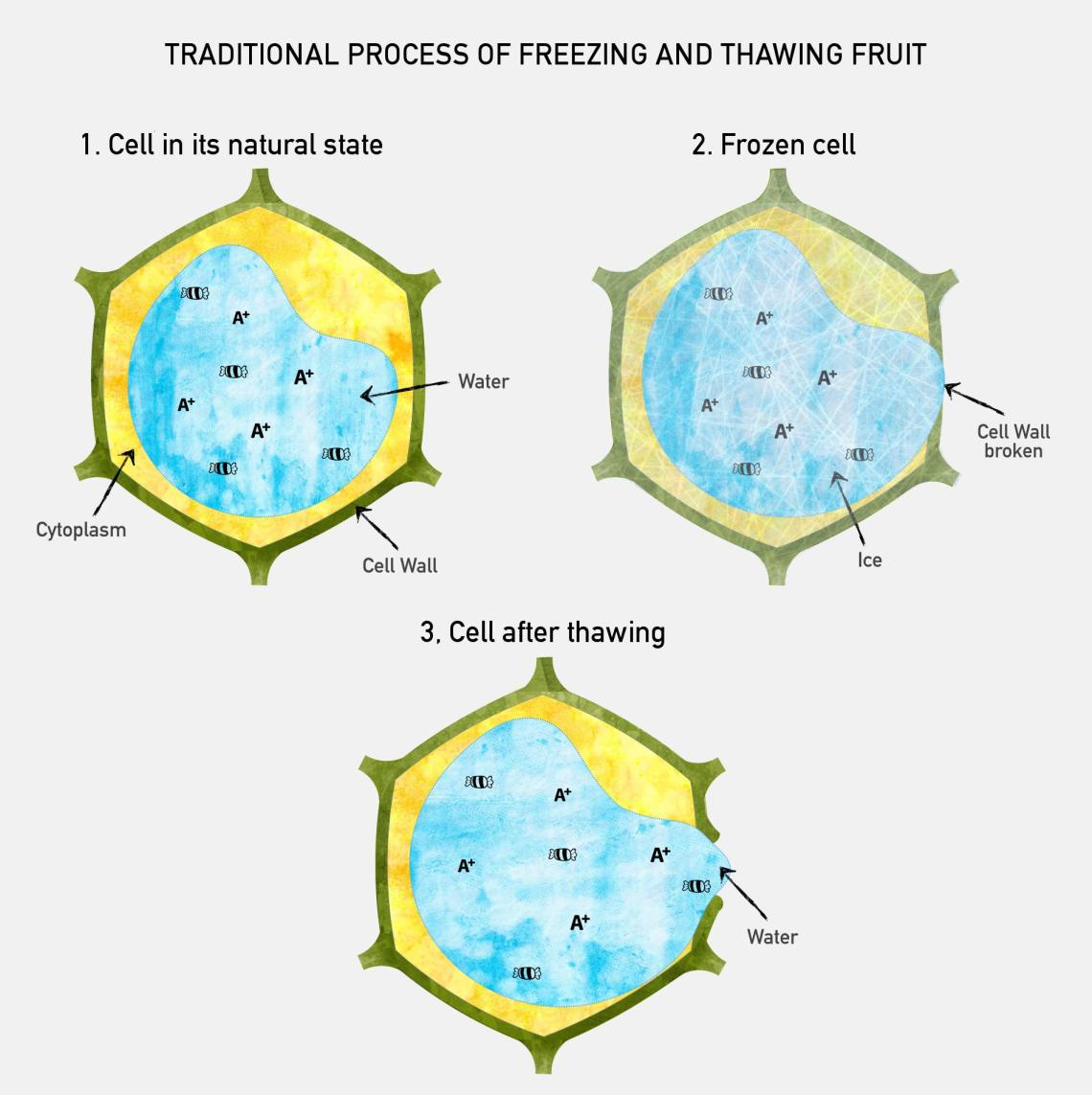 Image Result For How To Figure Water Volume