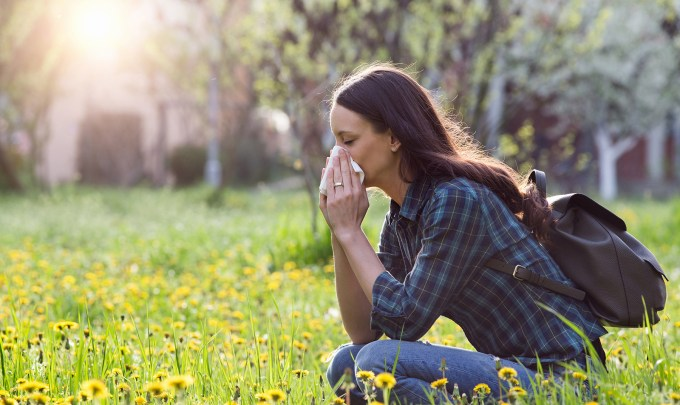 Nanobodies: Powerful tools for passive allergy treatment