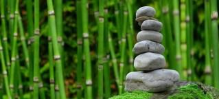 méditation : des pierres empilées devant des roseaux