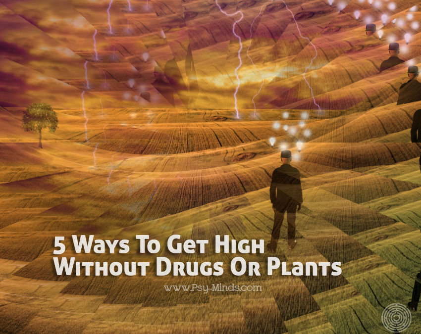 Get High Without Drugs Plants