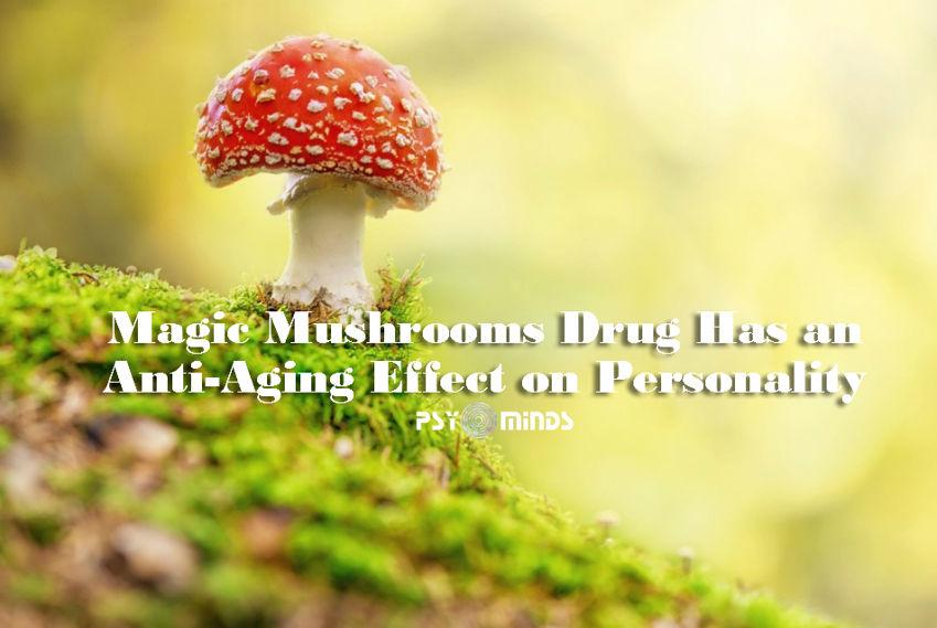 Magic Mushrooms Drug Anti-Aging Effect Personality