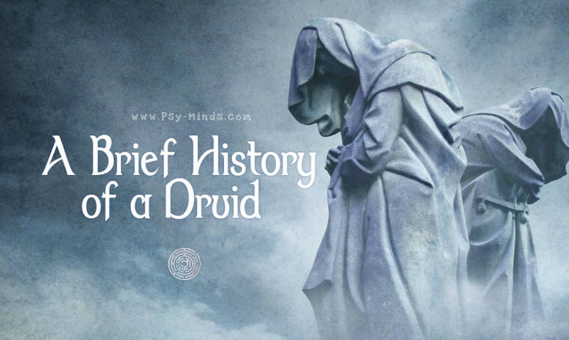 A Brief History of a Druid
