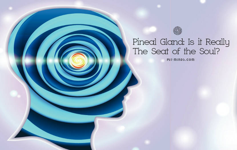 Pineal Gland Is it Really The Seat of the Soul