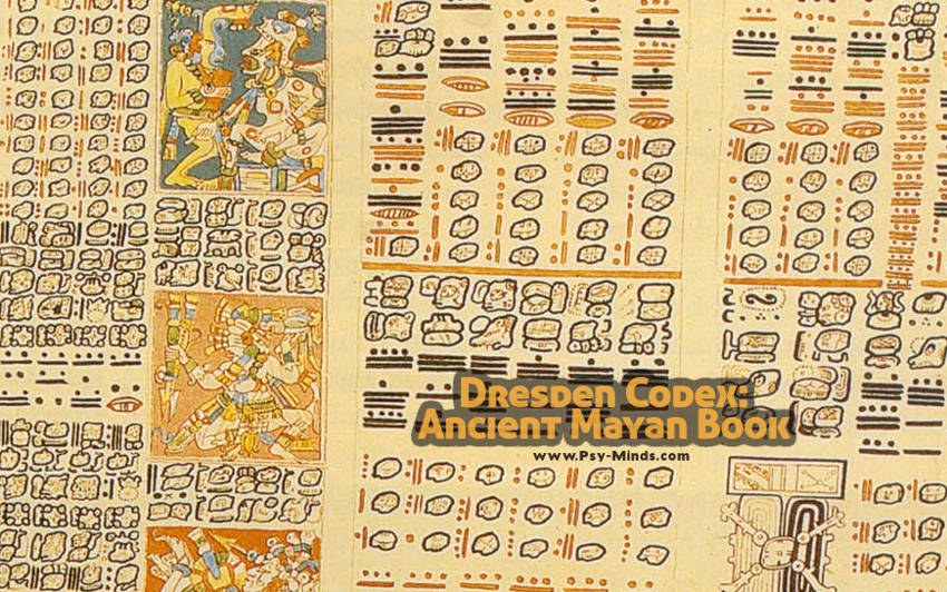 Dresden Codex Ancient Mayan Book