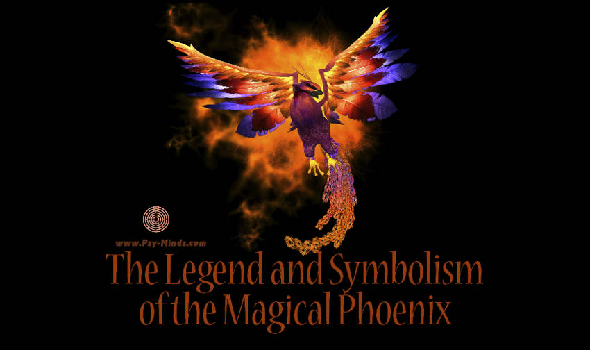 The Legend And Symbolism Of The Magical Phoenix Psy Minds