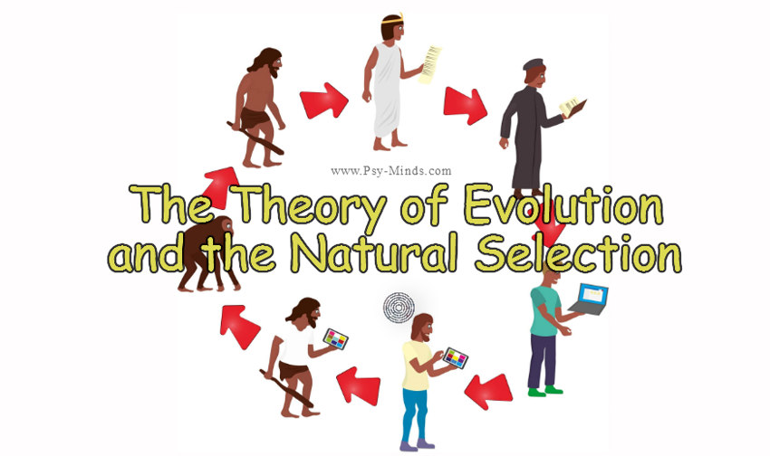 two theories on the nature of To this day, how exactly to define intelligence is still debated there are, however, two major schools of thought on its nature and properties this paper examines and evaluates the two opposing theories on the nature of intelligence the two opposing theories of intelligence are the one general.