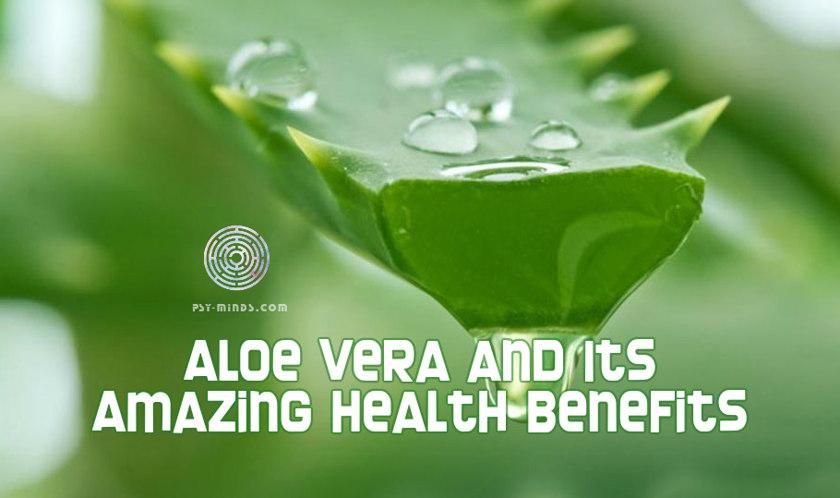 Aloe Vera and Its Amazing Health Benefits 34