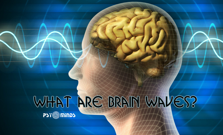 What are Brain Waves
