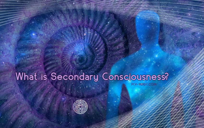What is Secondary Consciousness