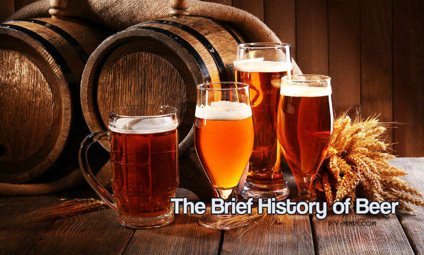 The Brief History of Beer