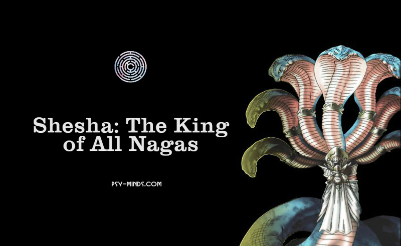 Shesha The King of All Nagas