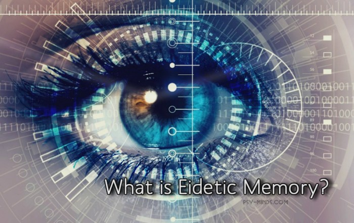 What is Eidetic Memory