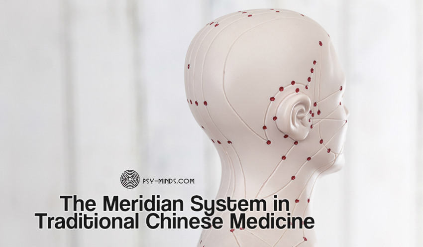 The Meridian System in Traditional Chinese Medicine