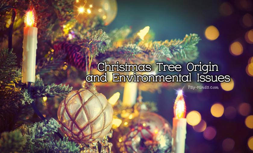 Christmas Tree Origin and Environmental Issues