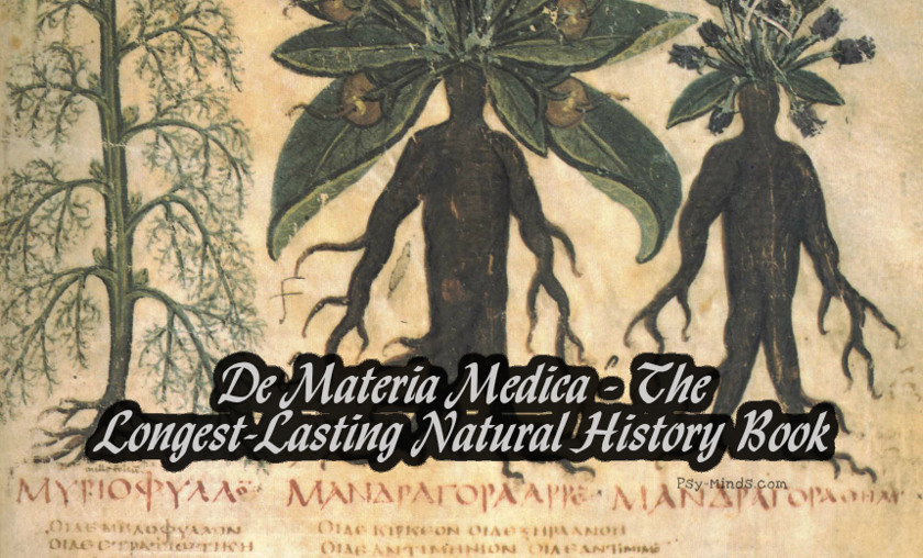 De Materia Medica - The Longest-Lasting Natural History Book