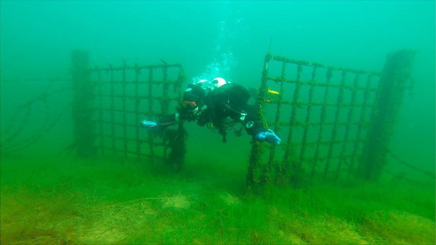 Zatopiona brama - jedna z najbardziej charakterystycznych atrakcji Rummu Karjäär