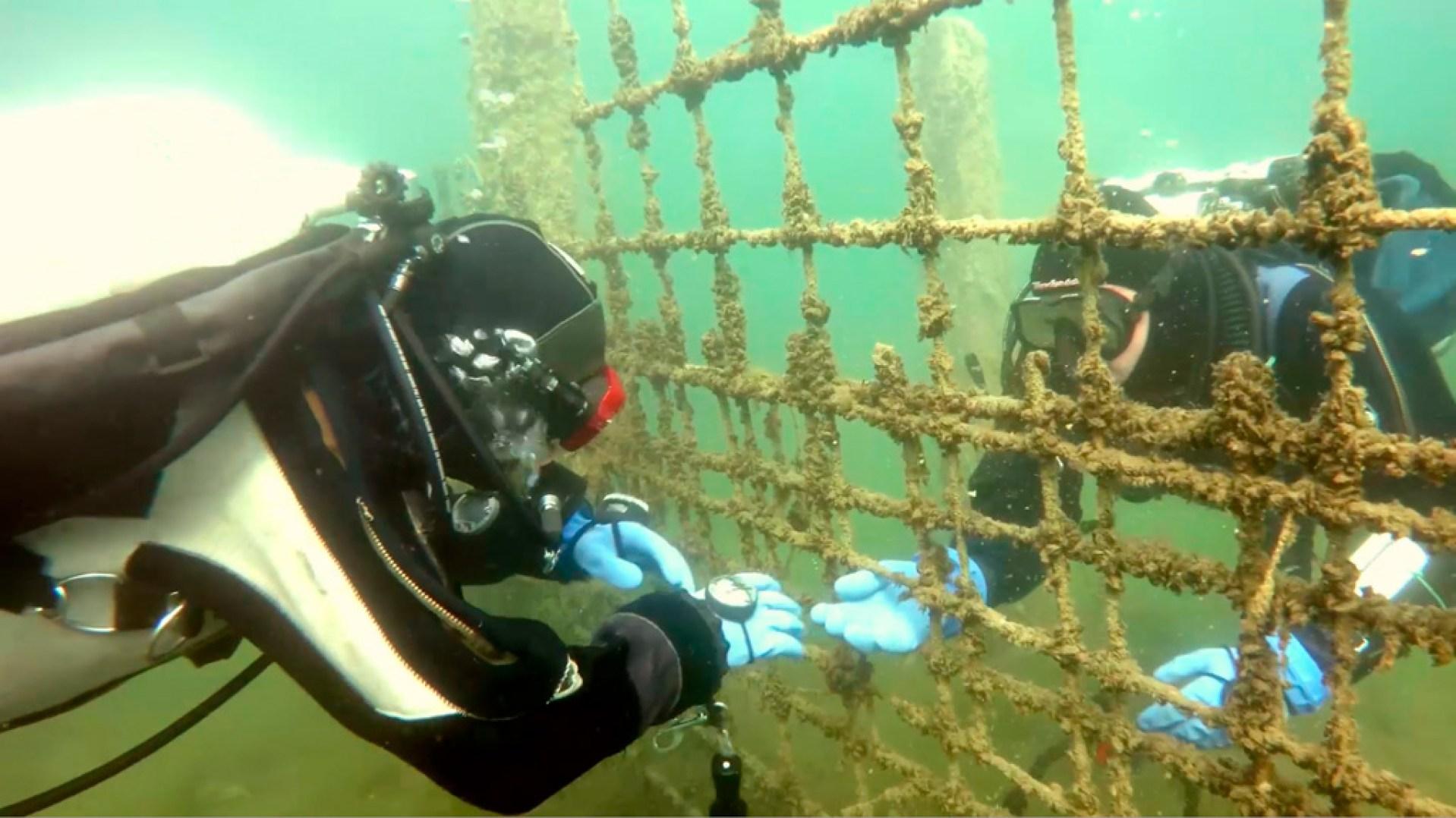 Filmowanie podwodne - kamerzysta rejestruje scenkę odgrywaną przez partnerów