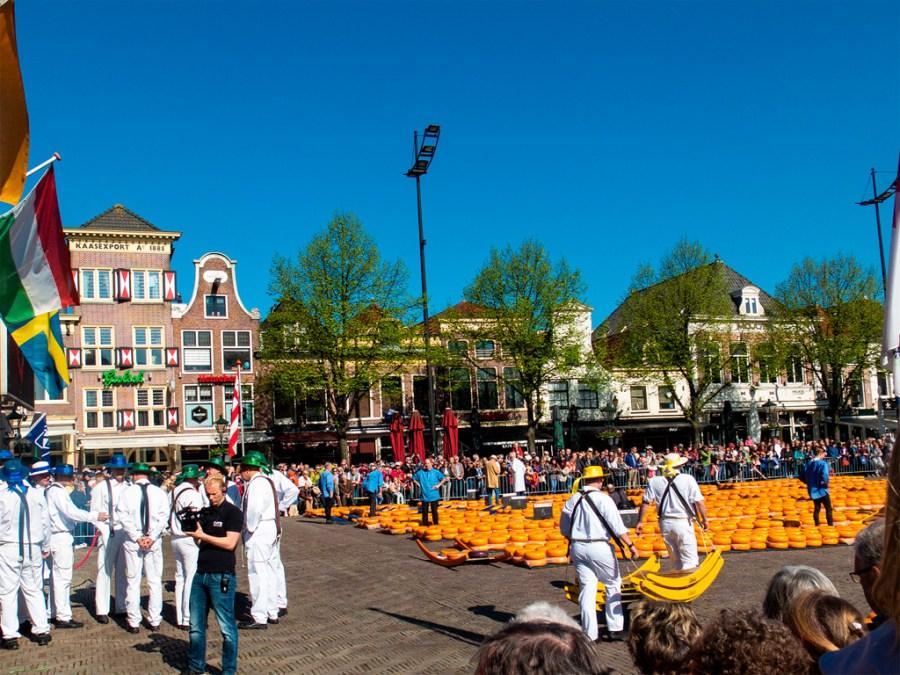 Wśród leżących na placu serów kręcą się tragarze w kolorowych kapeluszach
