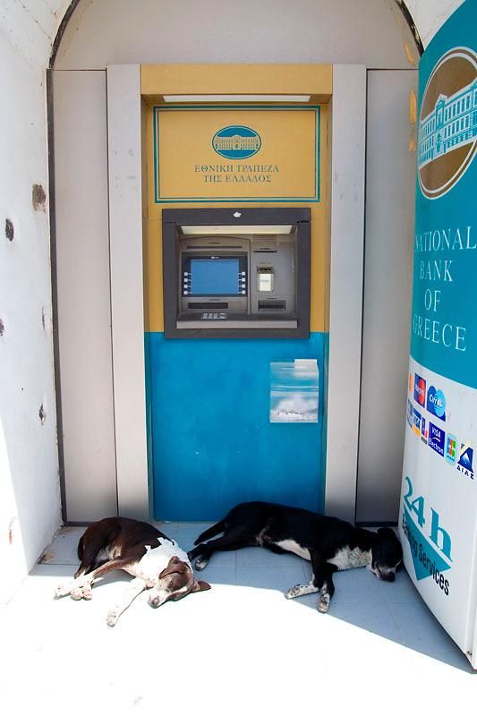 Dwa psy śpiące pod bankomatem w Grecji