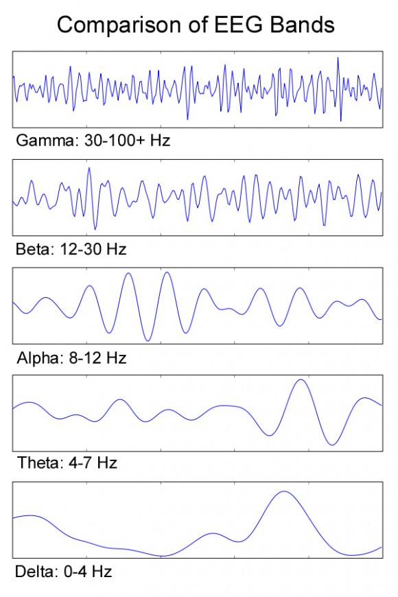 EEG Bands of brainwaves