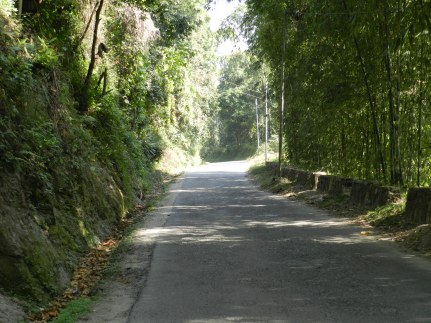Road to the City