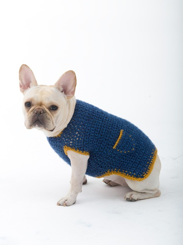 Crochet sweater pattern for small dogs