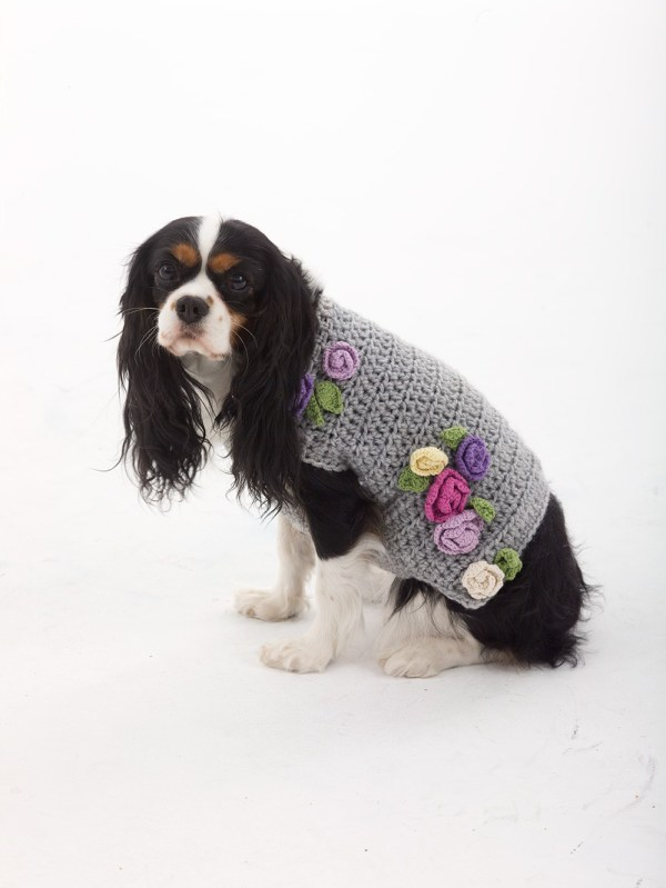 Free Dog Sweater Crochet Patterns Psychedelic Doilies Cool Crochet Dog Sweater Pattern Easy