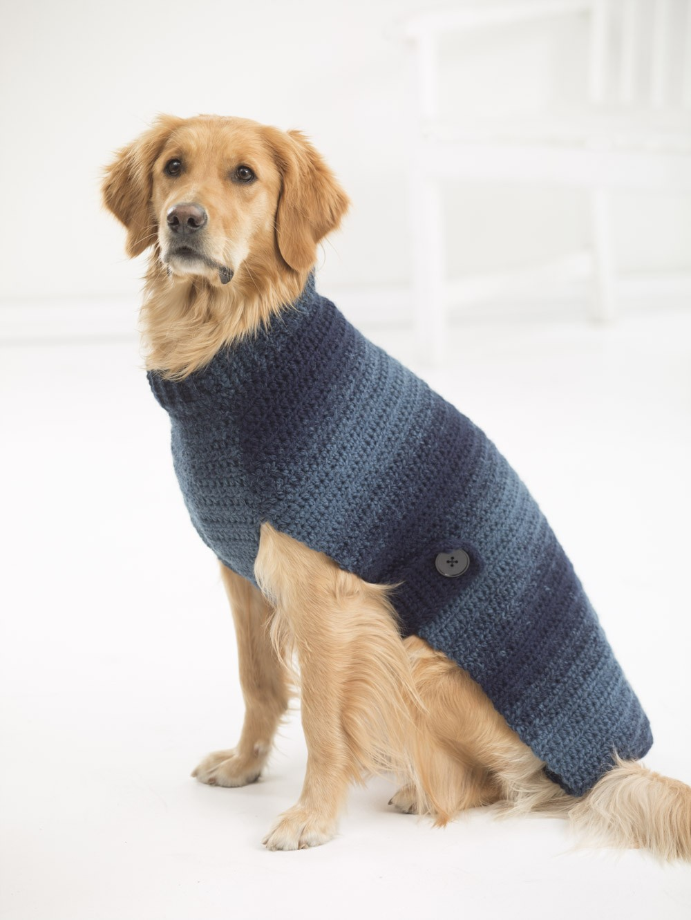 photo about Dog Coat Sewing Patterns Free Printable titled Free of charge Canine Sweater Crochet Designs - Psychedelic Doilies