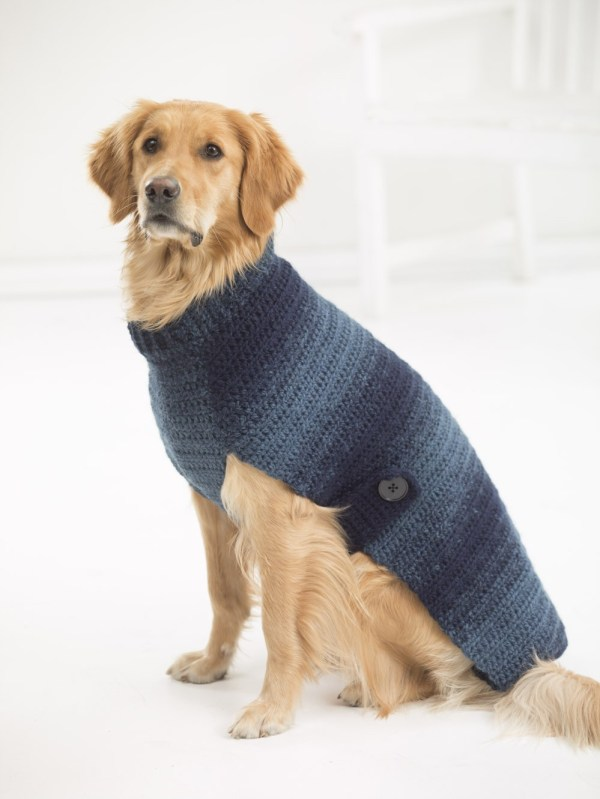 Free crochet sweater pattern for large dogs.