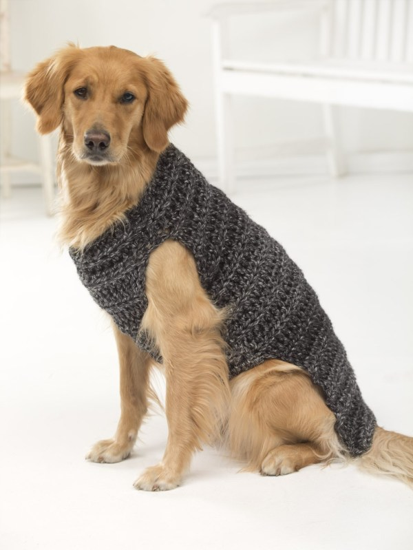 Crochet dog sweater for large dogs. Free crochet pattern.