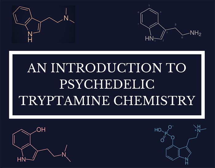 An Introduction to Psychedelic Tryptamine Chemistry – Psychedelics Today