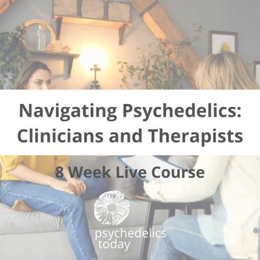 Psychedelic Training for Therapists and Clinicians - Navigating Psychedelics
