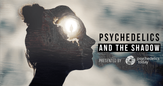 Psychedelics and The Shadow