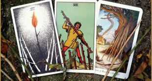 Wands Tarot Cards Meanings