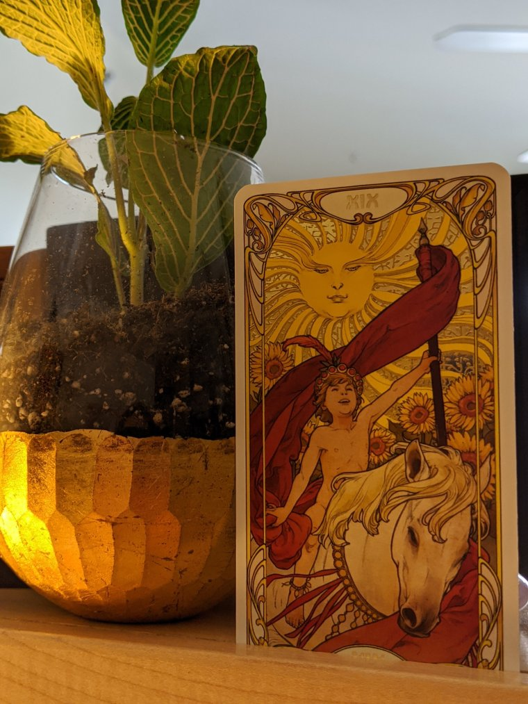 Daily Tarot Card Reading - The Sun - Golden Art Nouveau Tarot Deck www.psychicreadingsbybrandi.com ©Psychic Readings By Brandi