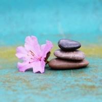 De l'ego au Soi : la distinction chez Jung
