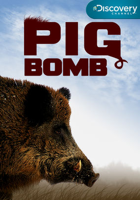 Pig Bomb cover